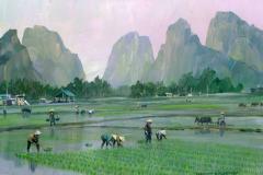 VietnamHalongBayRicePaddy