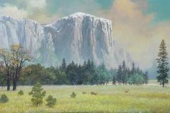 YosemiteLateAutumn