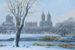 CentralParkLakeWinter